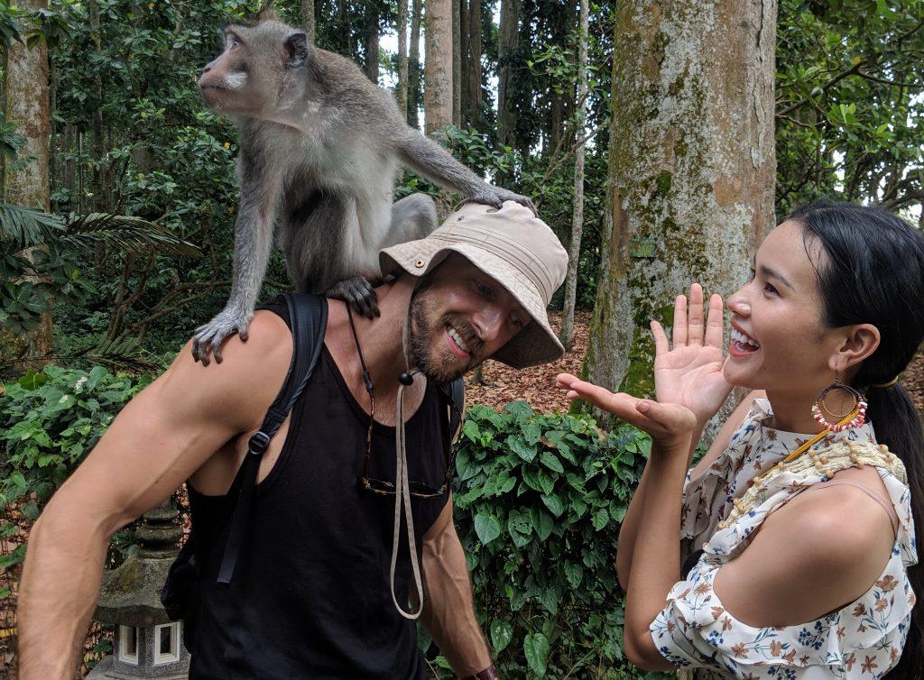 sangeh monkey forest ubud