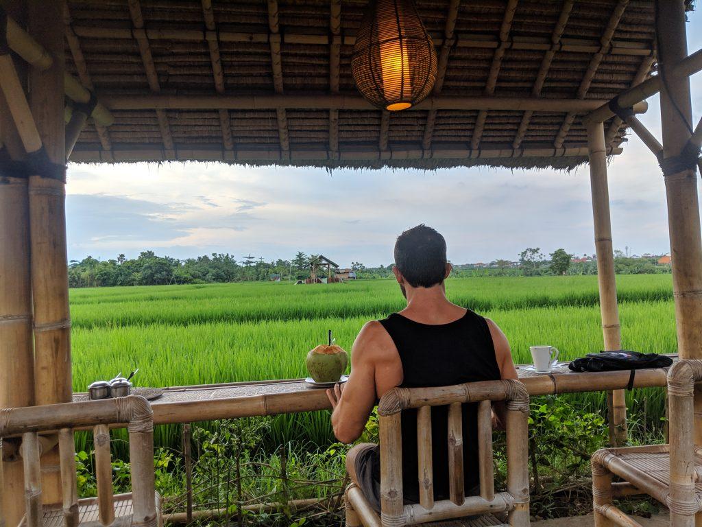 bali ubud rice patties fields instagrammable digital nomad