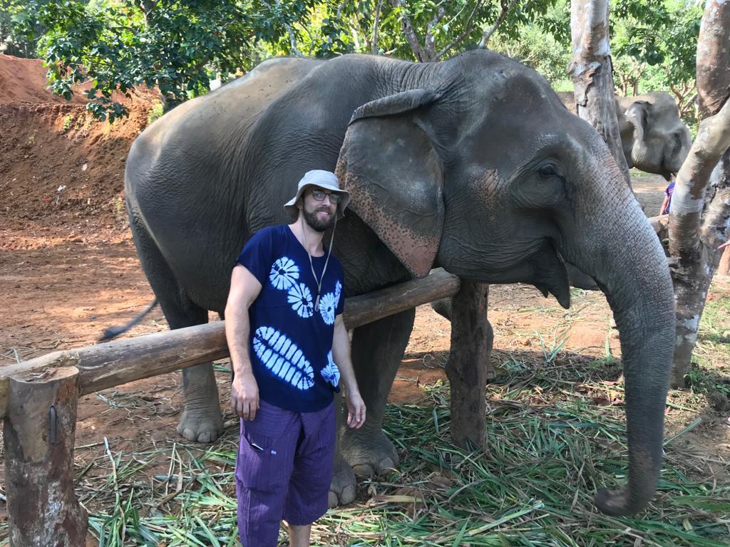 elephant santuary chiang mai