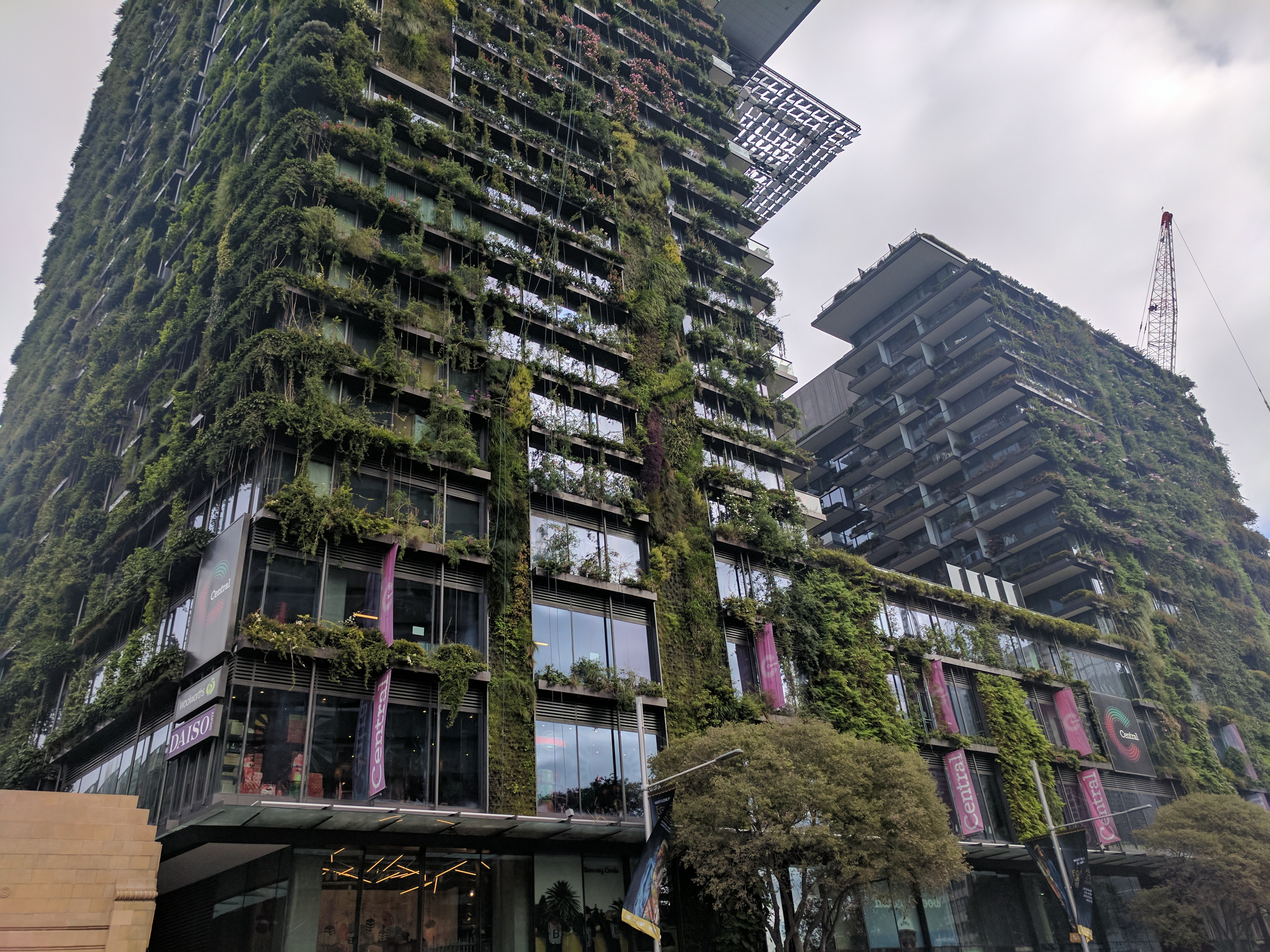 natural green building sydney australia