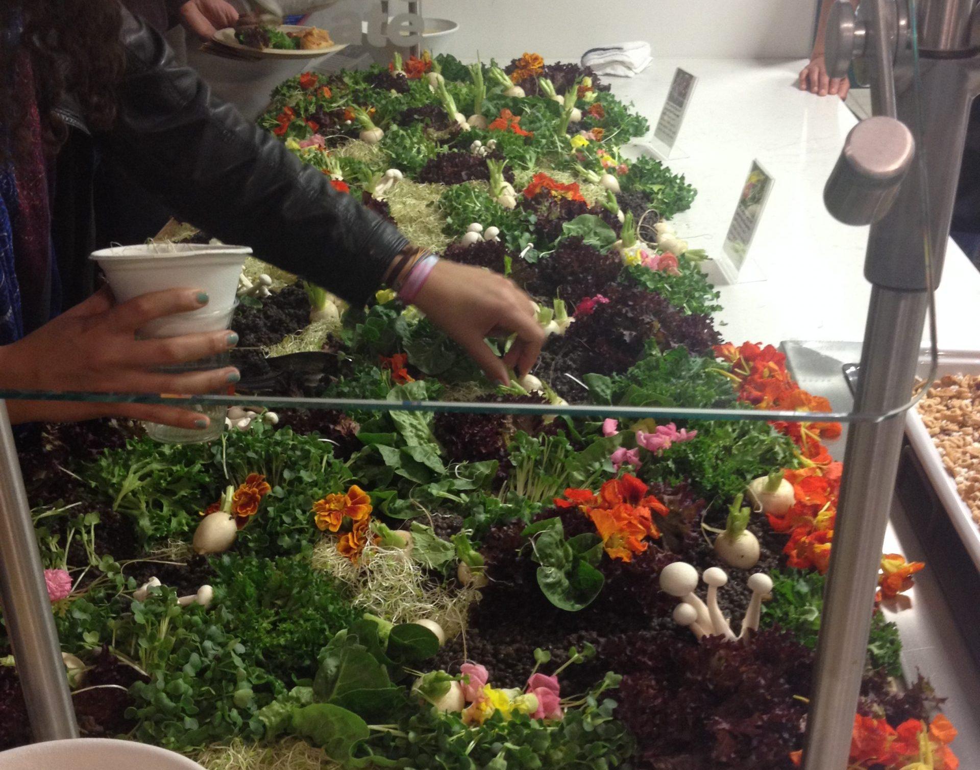 airbnb HQ kitchen salad