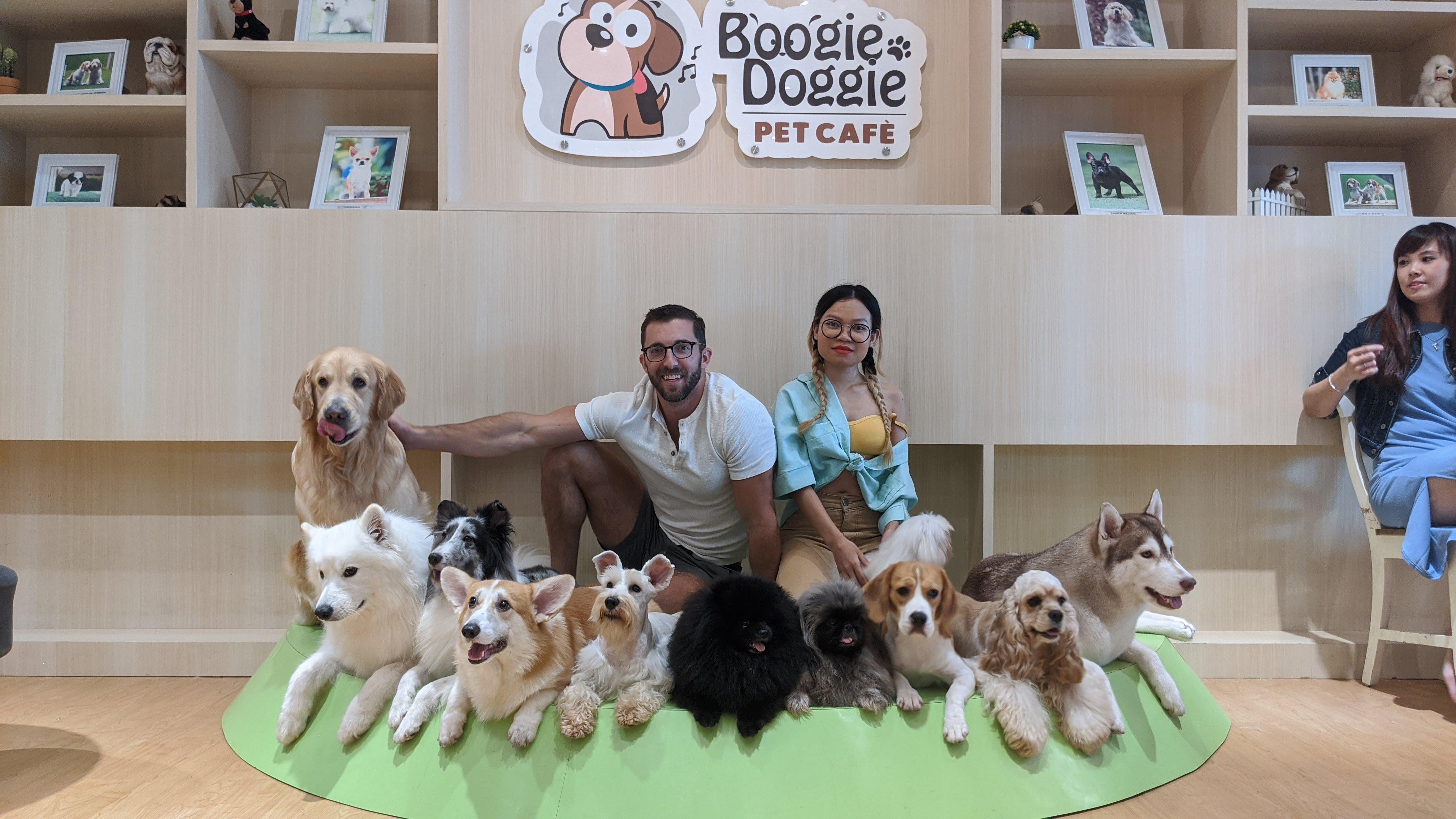 boogie doggie jakarta indonesia pet cafe